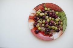 在板材的鹅莓 库存图片