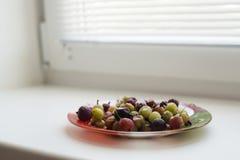 在板材的鹅莓 免版税库存照片