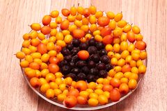 在板材的黑莓果 免版税库存图片