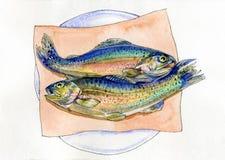 在板材的水彩两鳟鱼 库存例证