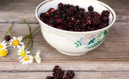 在板材的黑莓 它在春黄菊旁边说谎 免版税图库摄影