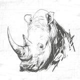 在板刻艺术的顶头犀牛  图库摄影