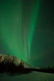在极光森林北极星之上 免版税库存图片