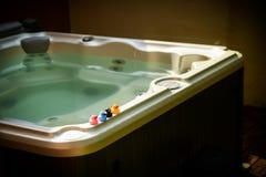 在极可意浴缸的鸭子 库存照片