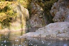 在林恩小河的岩石 库存图片