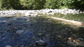 在林恩峡谷的30只脚水池 影视素材