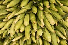 在果壳的玉米在堆 库存图片