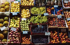 在架子的各种各样的果子 免版税库存照片