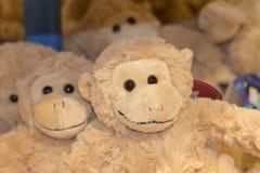 在架子的长毛绒猴子 图库摄影