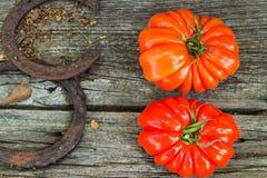 在柏木南路易斯安那的蕃茄 库存照片