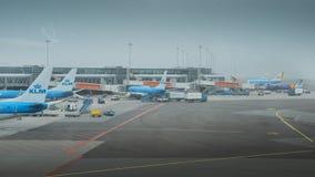 在柏油碎石地面的KLM飞机在斯希普霍尔机场在阿姆斯特丹 库存照片