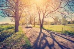 在柏油路的汽车在春天 免版税图库摄影