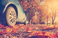 在柏油路的汽车在秋天 免版税库存照片