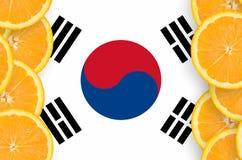 在柑桔切片垂直的框架的韩国旗子 免版税库存图片