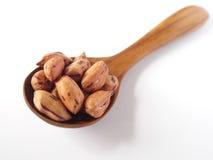 在柚木木材匙子的老虎豆 免版税图库摄影