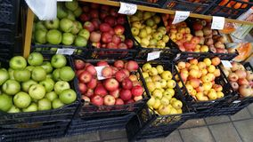 在柜台的新鲜的五颜六色的苹果 库存图片
