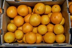 在柜台的新鲜的开胃果子在商店 免版税库存图片