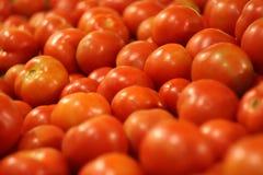 在柜台的蕃茄 免版税库存照片