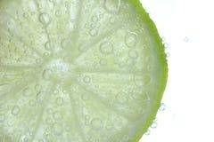 在柠檬切片的泡影 免版税库存图片