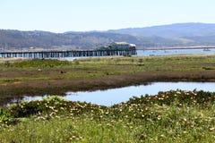在柱子点港口,加州的老,被风化的码头 免版税库存照片