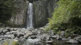 在柱状联接的瀑布 影视素材
