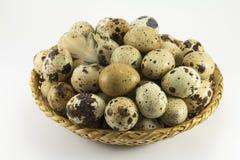 在柳条卵形形状的鹌鹑蛋 库存照片