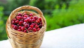 在柳条筐和被隔绝的白色背景里面的红色樱桃 库存照片