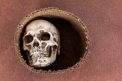 在柳条筐的人的头骨 库存照片