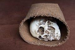 在柳条筐的人的头骨 免版税库存照片