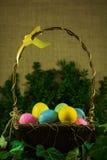 在柳条筐的复活节彩蛋与绿色分支和常春藤 库存照片