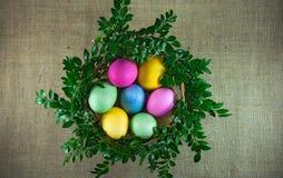 在柳条筐的复活节彩蛋与绿色分支 顶视图 免版税图库摄影