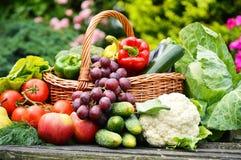 在柳条筐的新鲜的有机菜在庭院里 免版税库存照片