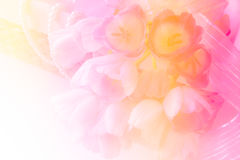在柳条筐的新鲜的桃红色百合装饰珍珠和丝带 库存图片