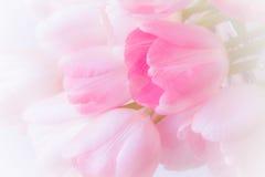 在柳条筐的新鲜的桃红色百合装饰珍珠和丝带 免版税库存照片