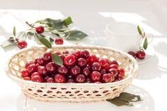 在柳条筐的樱桃在白色背景 红色浆果 免版税库存照片