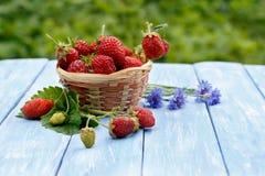 在柳条筐的特写镜头草莓和在木蓝色桌上的紫色矢车菊 免版税库存照片