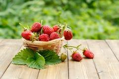 在柳条筐的特写镜头草莓在叶子背景  免版税库存照片