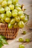 在柳条筐的群葡萄与叶子 库存照片