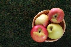 在柳条筐的苹果在绿色背景 免版税库存图片
