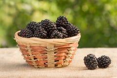 在柳条筐的黑莓在叶子背景  图库摄影