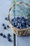 在柳条筐的黑莓在灰色木桌上 免版税库存图片