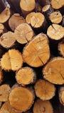 在柴堆的被折叠的橡木木柴特写镜头 免版税库存图片