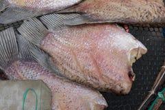 在栅格的干鱼在市场上 免版税库存照片