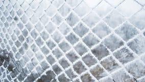 在栅格的雪 免版税库存图片