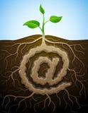 在标志喜欢植物根  免版税图库摄影