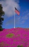 在标志小山紫色上面 免版税图库摄影