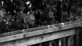 在栏杆的雨在黑白照片 股票录像