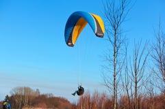 在树上的滑翔伞,滑翔伞飞行在森林 库存照片