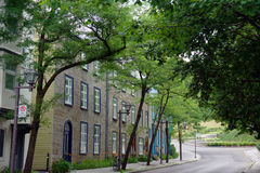 在树下树荫的老街道  免版税库存照片