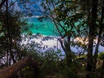 在树丛后的Telaga Warna 库存图片